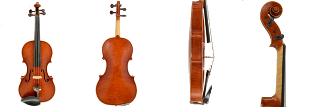 Violin #48 hand crafted by Ray Leicht